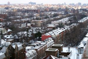 Apartments in Lefferts Gardens, Brooklyn real estate, Lefferts Gardens commercial properties