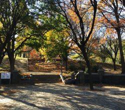 Fort Greene Park in Fort Greene